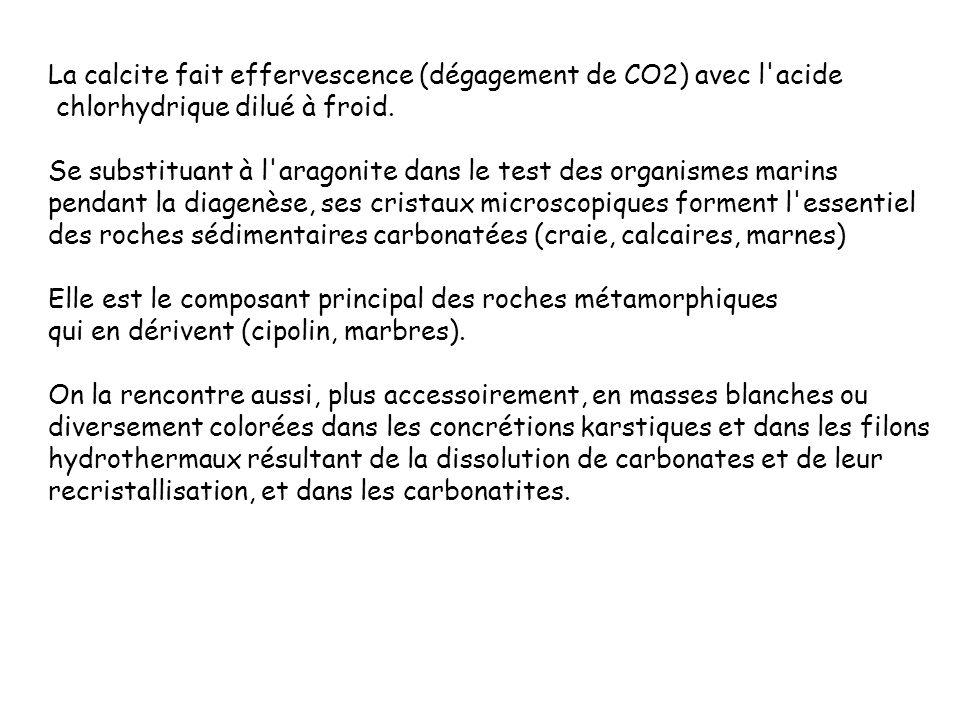 La calcite fait effervescence (dégagement de CO2) avec l acide
