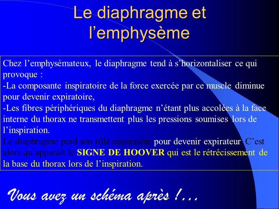 Le diaphragme et l'emphysème
