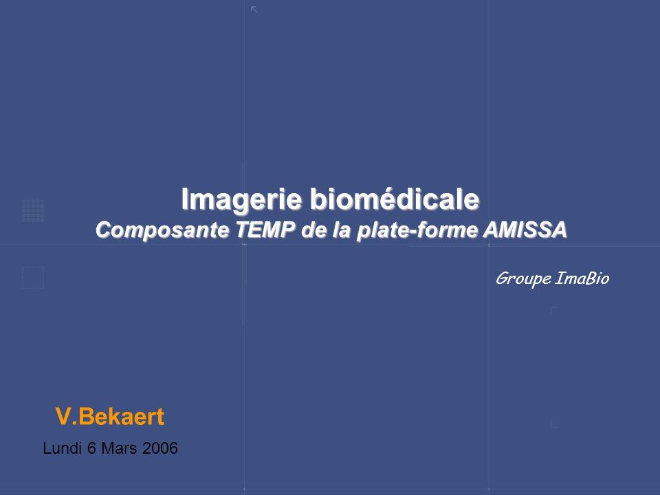 Imagerie biomédicale Composante TEMP de la plate-forme AMISSA