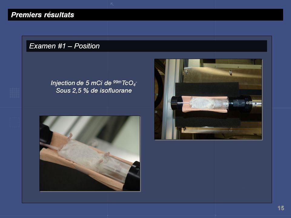 Injection de 5 mCi de 99mTcO4- Sous 2,5 % de isofluorane