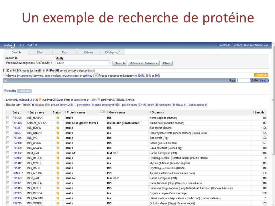 Un exemple de recherche de protéine