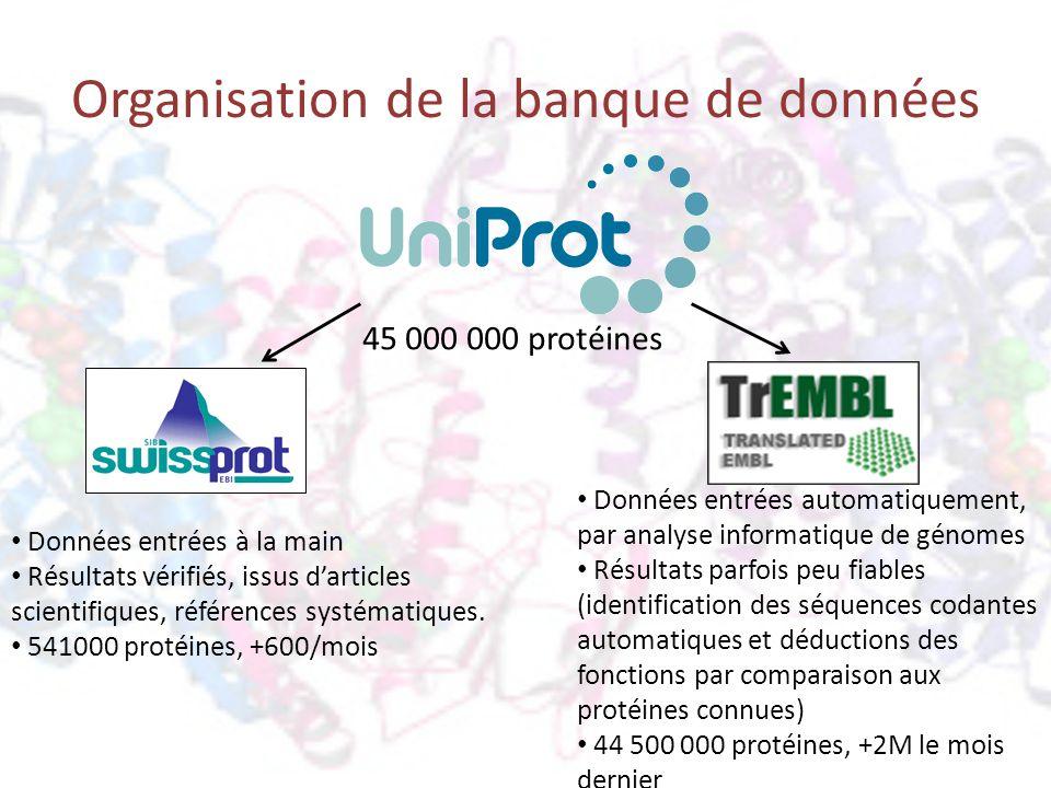 Organisation de la banque de données