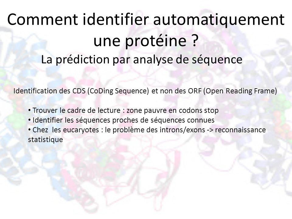 Comment identifier automatiquement une protéine