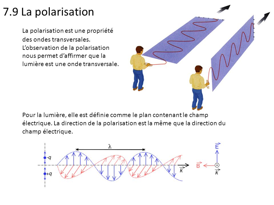 7.9 La polarisation