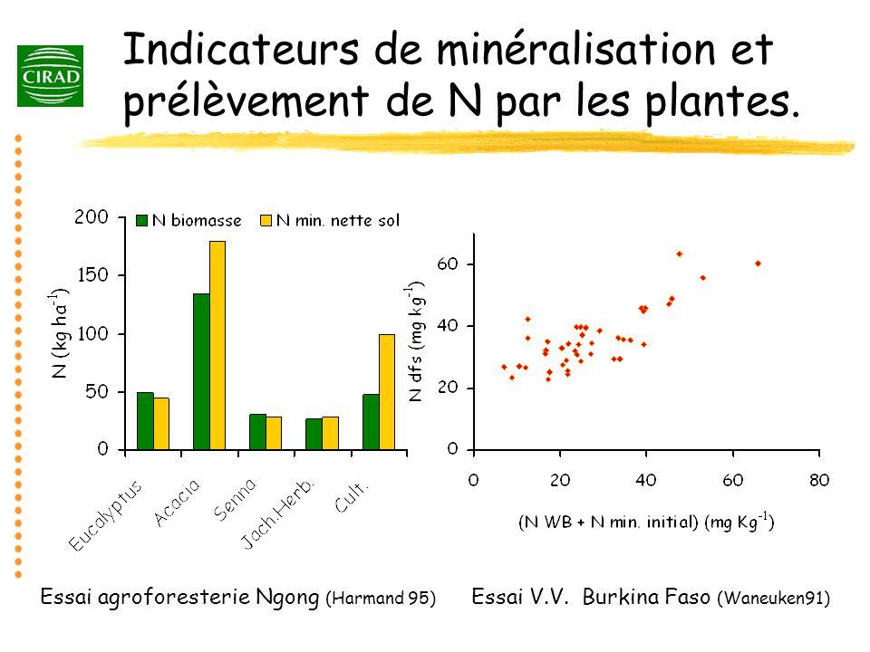 Indicateurs de minéralisation et prélèvement de N par les plantes.