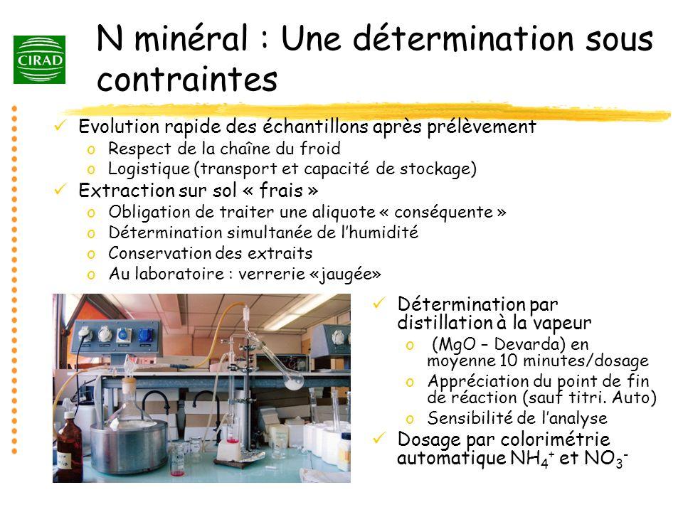 N minéral : Une détermination sous contraintes