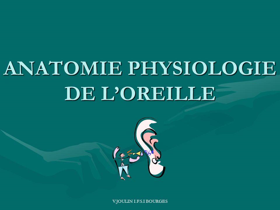 ANATOMIE PHYSIOLOGIE DE L'OREILLE