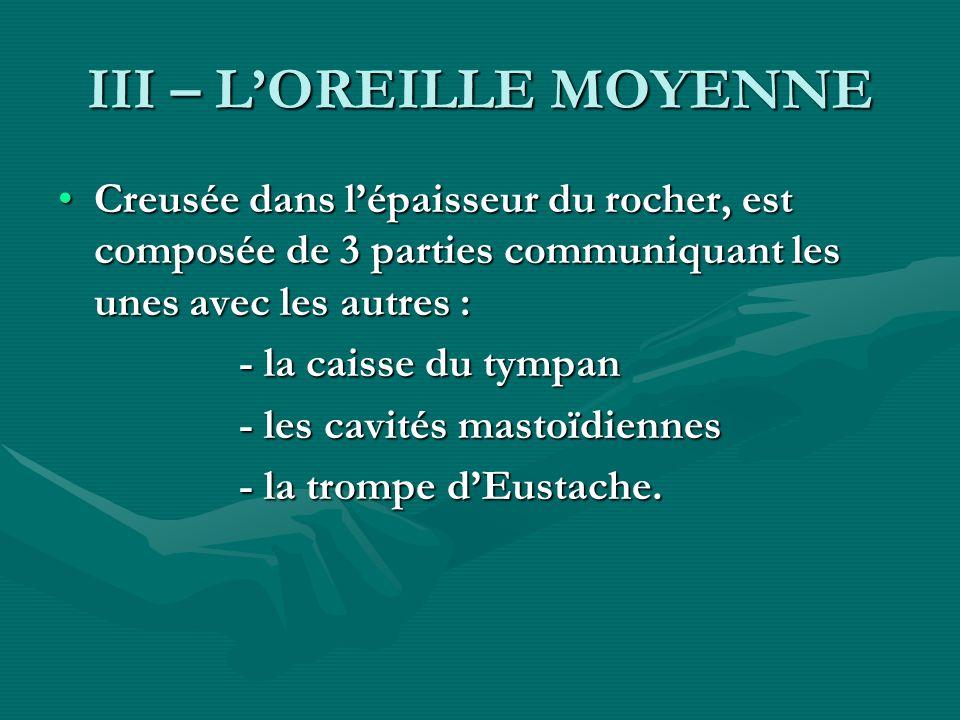 III – L'OREILLE MOYENNE