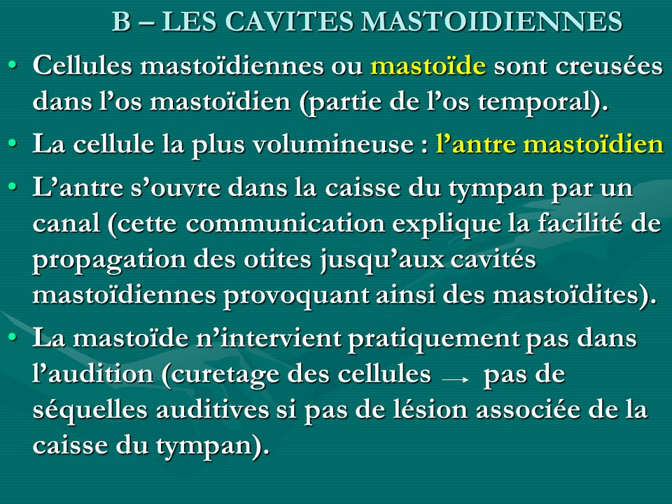 B – LES CAVITES MASTOIDIENNES