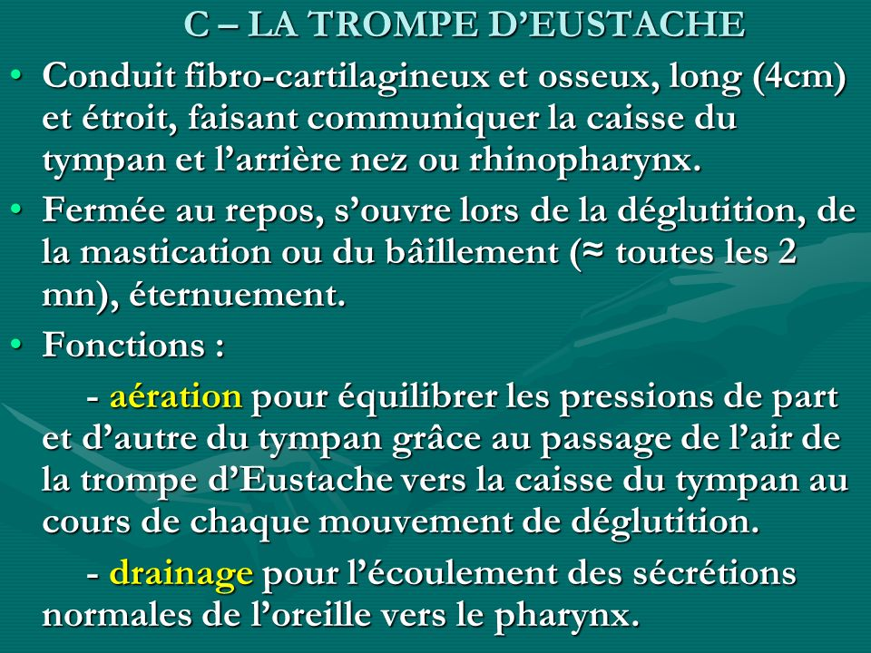 C – LA TROMPE D'EUSTACHE