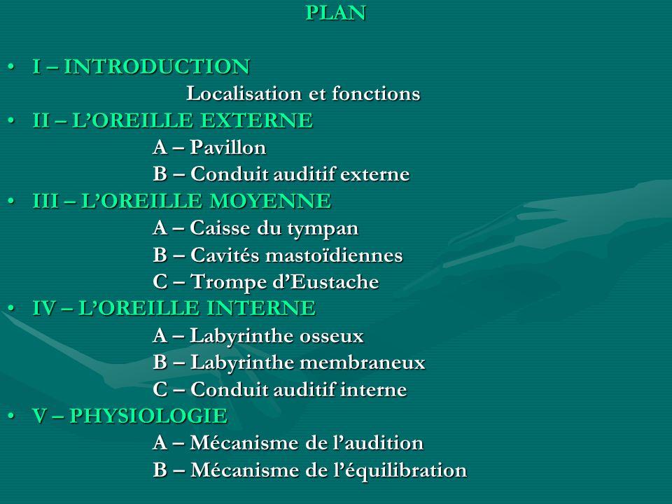 PLANI – INTRODUCTION. Localisation et fonctions. II – L'OREILLE EXTERNE. A – Pavillon. B – Conduit auditif externe.