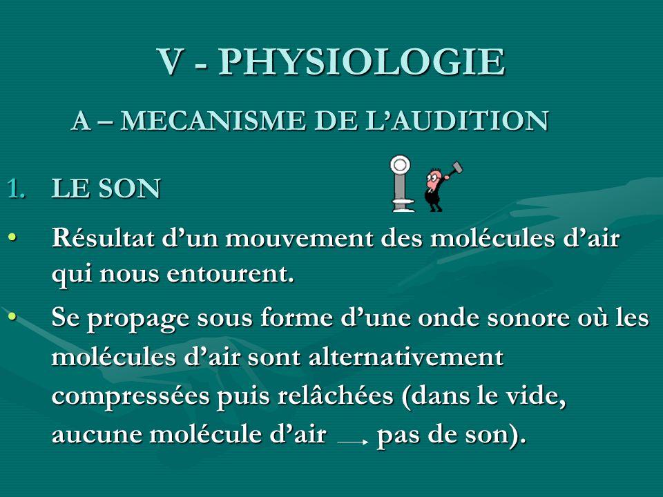V - PHYSIOLOGIE A – MECANISME DE L'AUDITION. LE SON. Résultat d'un mouvement des molécules d'air qui nous entourent.
