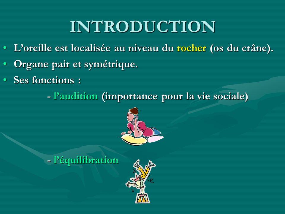 INTRODUCTION L'oreille est localisée au niveau du rocher (os du crâne). Organe pair et symétrique.