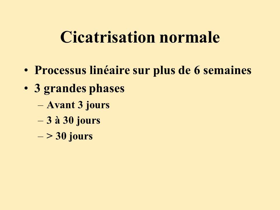 Cicatrisation normale