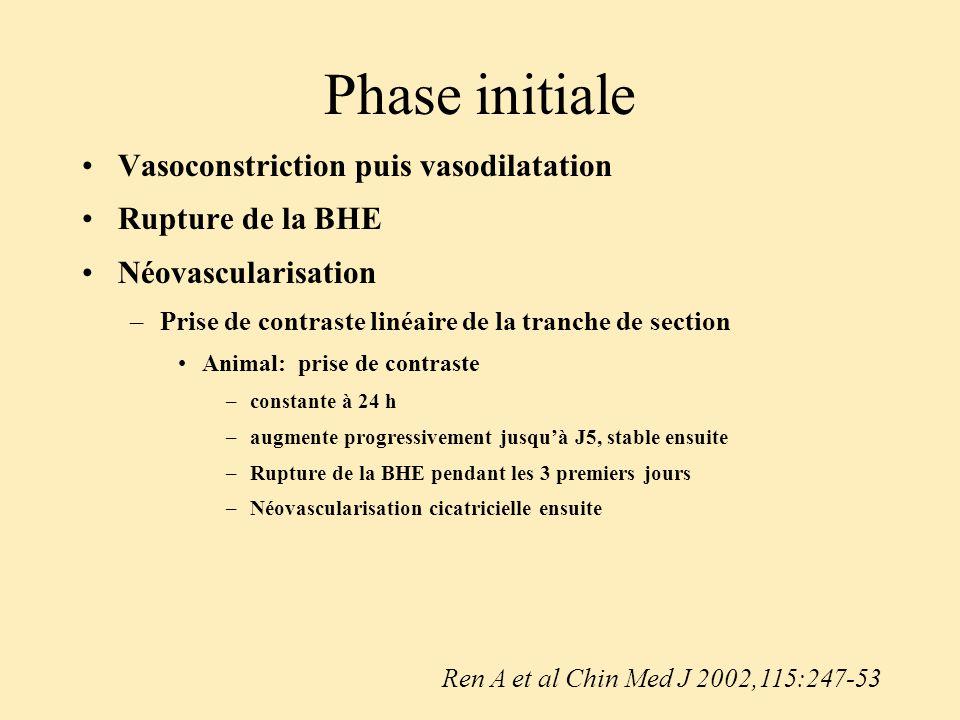 Phase initiale Vasoconstriction puis vasodilatation Rupture de la BHE