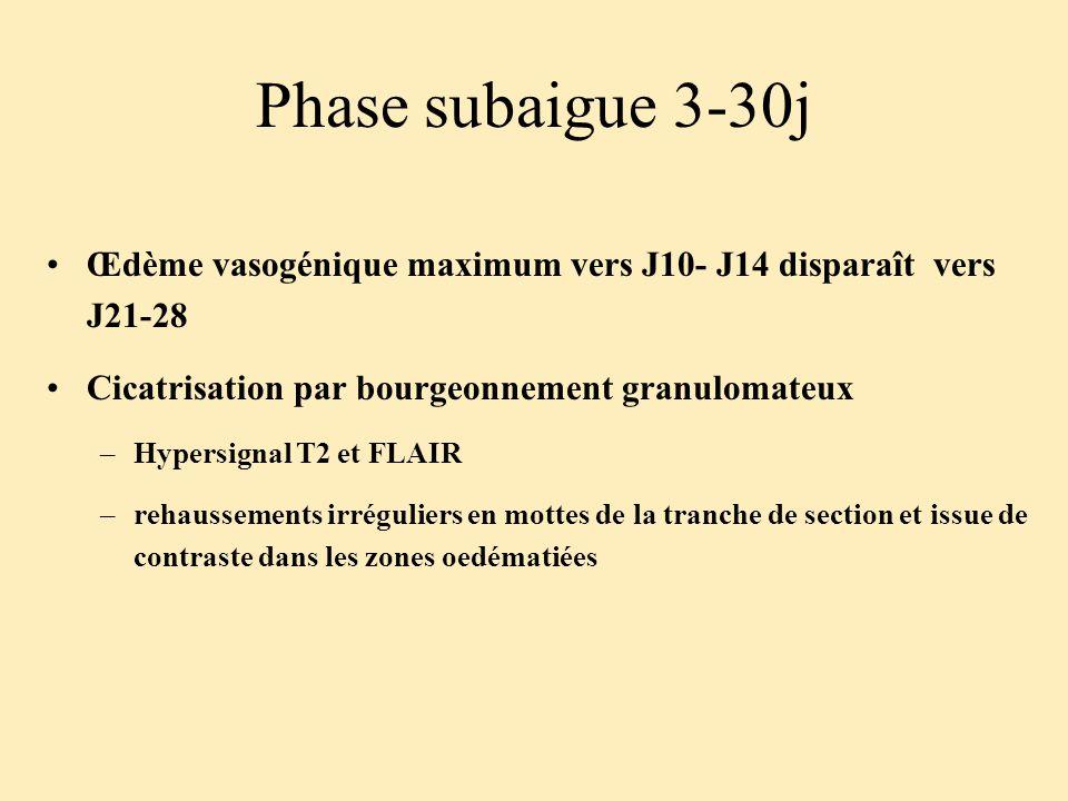 Phase subaigue 3-30j Œdème vasogénique maximum vers J10- J14 disparaît vers J21-28. Cicatrisation par bourgeonnement granulomateux.