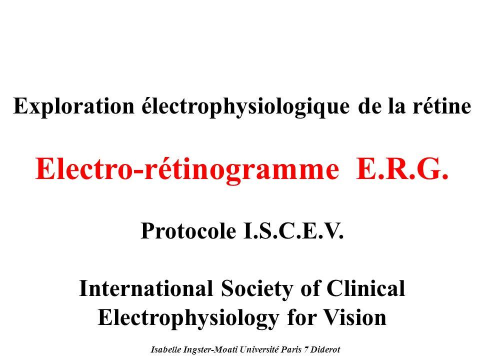 Electro-rétinogramme E.R.G.