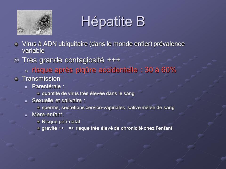 Hépatite B Très grande contagiosité +++