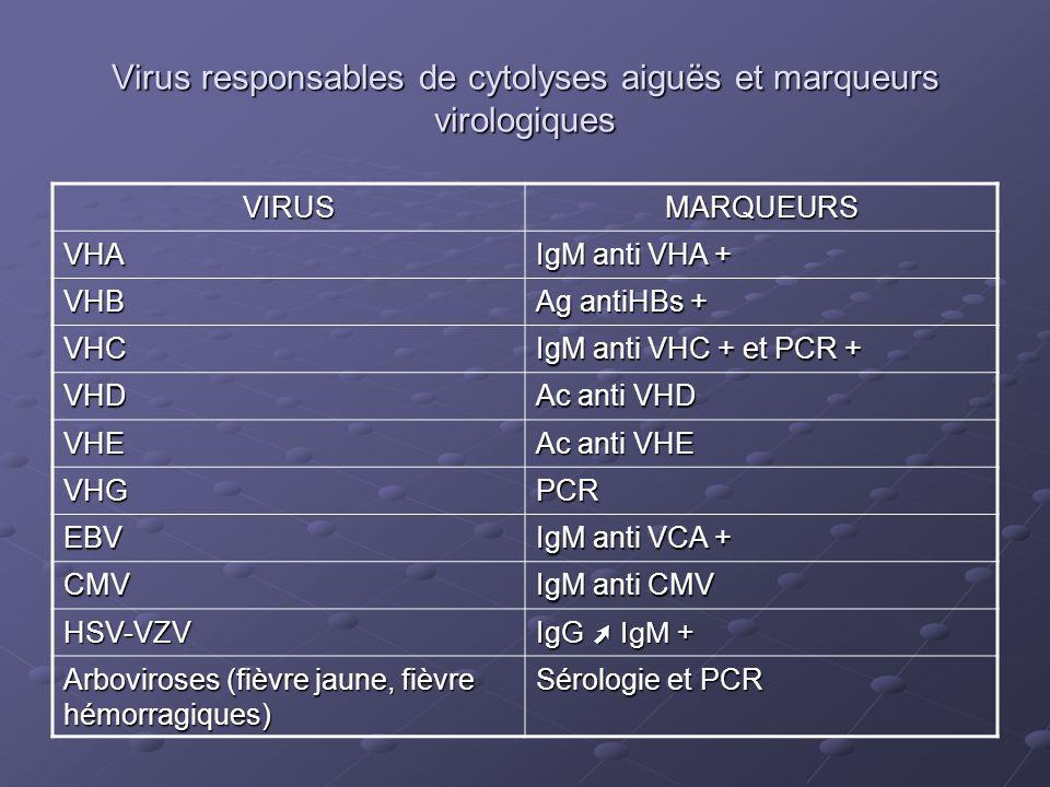 Virus responsables de cytolyses aiguës et marqueurs virologiques