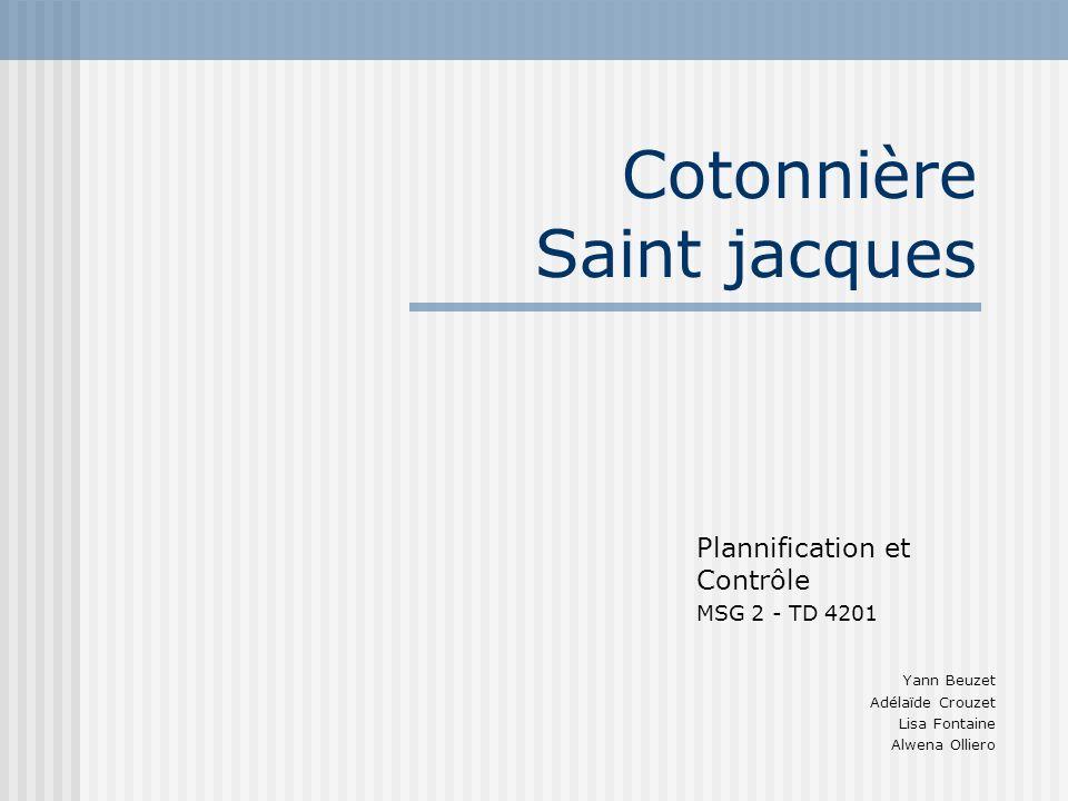 Cotonnière Saint jacques