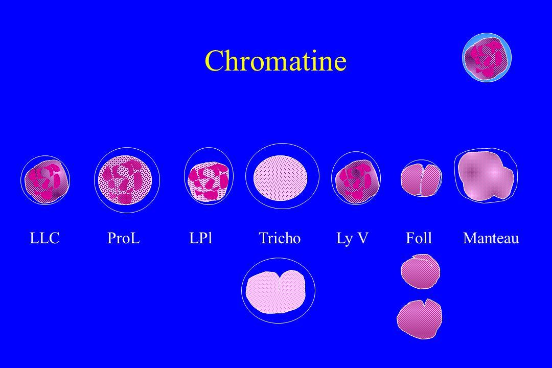 Chromatine LLC ProL LPl Tricho Ly V Foll Manteau