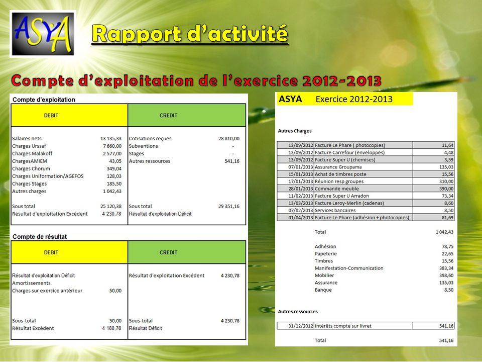 Rapport d'activité Compte d'exploitation de l'exercice 2012-2013