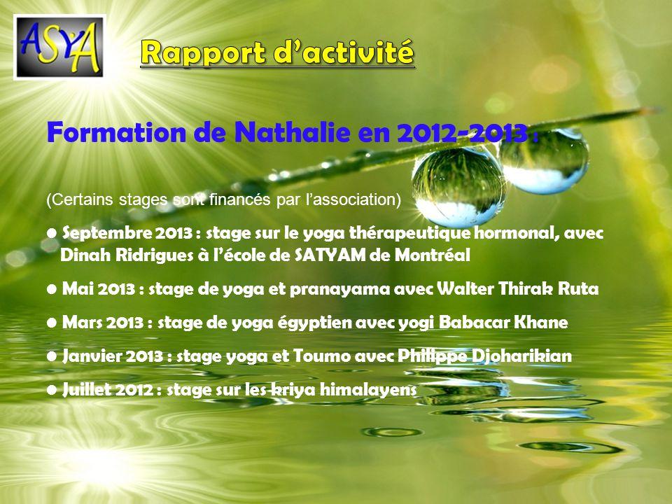 Rapport d'activité Formation de Nathalie en 2012-2013 :