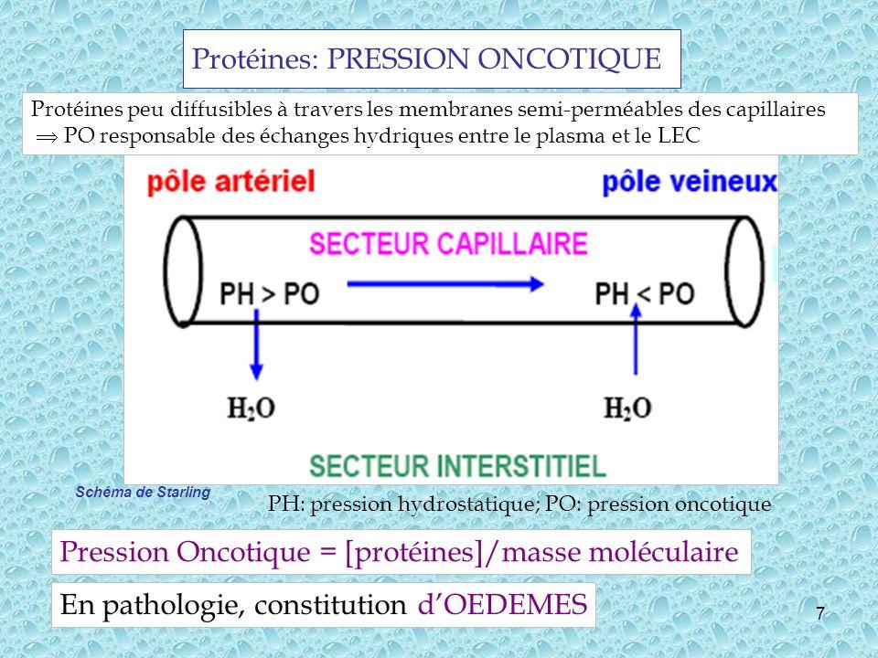 Protéines: PRESSION ONCOTIQUE
