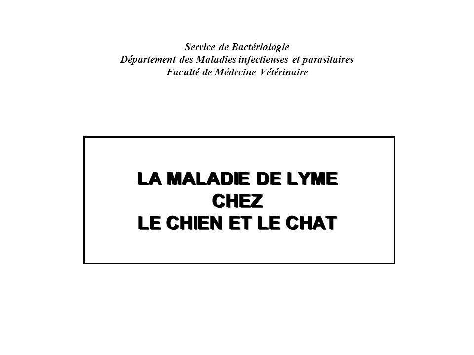 lyme chatrooms Quick guide to the most asked lyme disease questions here is a list to the most commonly asked lyme questions read more.