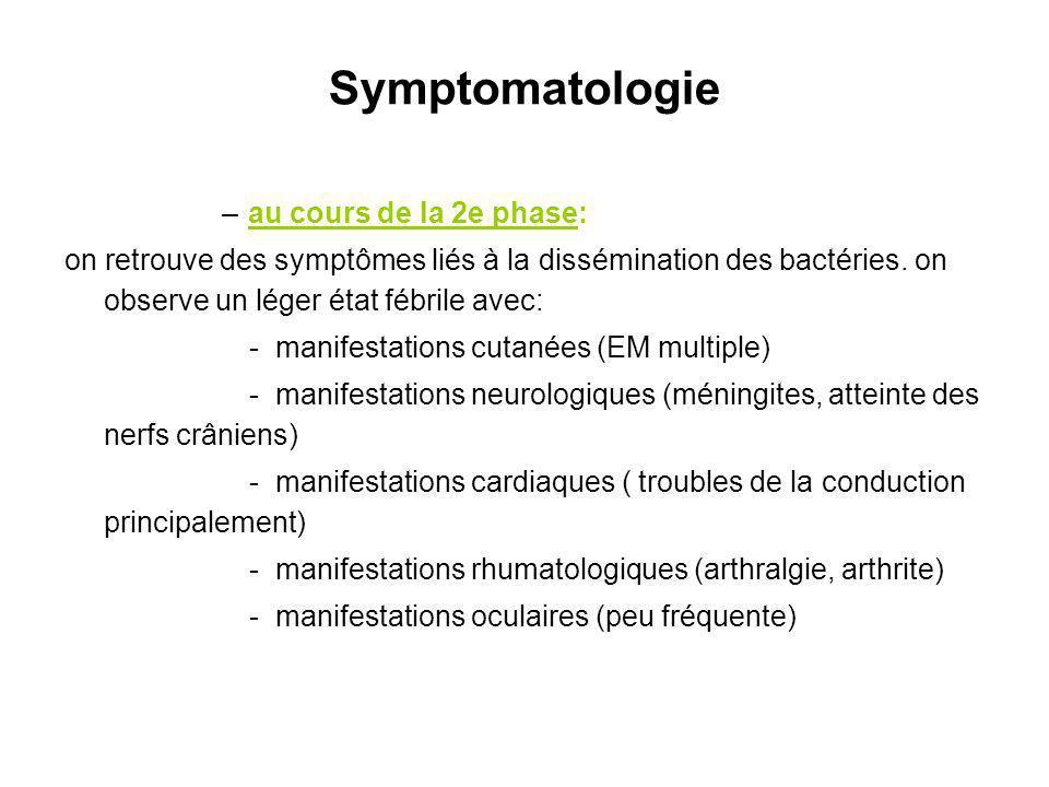 Symptomatologie au cours de la 2e phase: