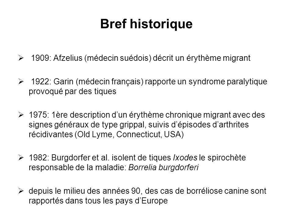 Bref historique 1909: Afzelius (médecin suédois) décrit un érythème migrant.