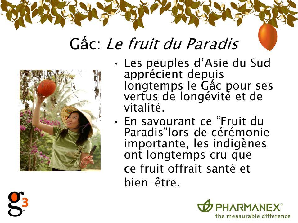 Gấc: Le fruit du Paradis