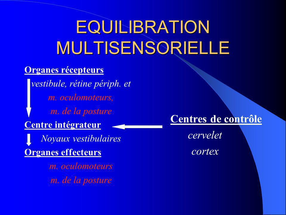 EQUILIBRATION MULTISENSORIELLE
