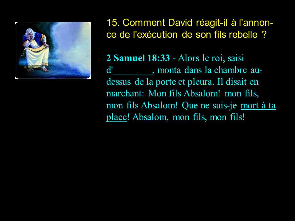 15. Comment David réagit-il à l annon-ce de l exécution de son fils rebelle