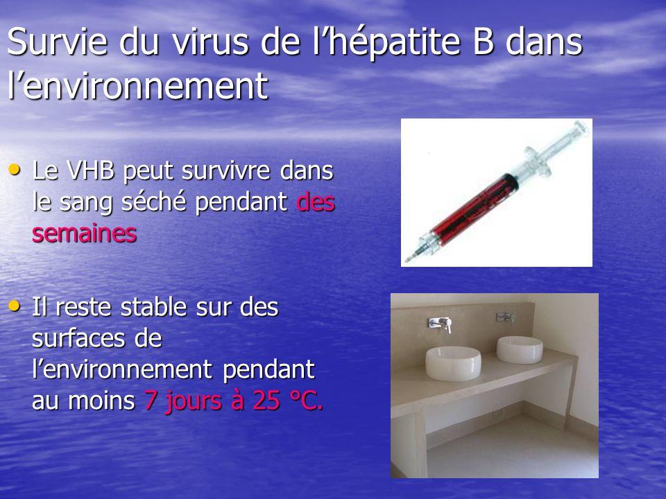 Survie du virus de l'hépatite B dans l'environnement