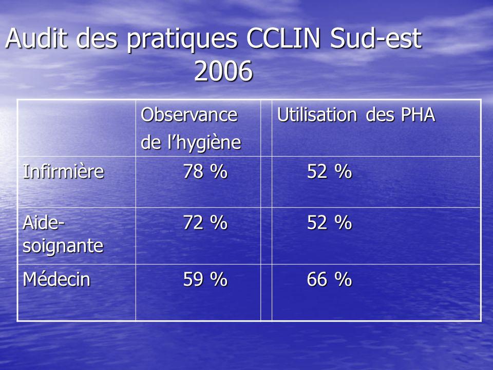 Audit des pratiques CCLIN Sud-est 2006