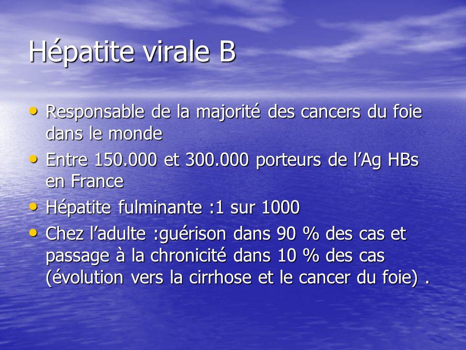 Hépatite virale B Responsable de la majorité des cancers du foie dans le monde. Entre 150.000 et 300.000 porteurs de l'Ag HBs en France.