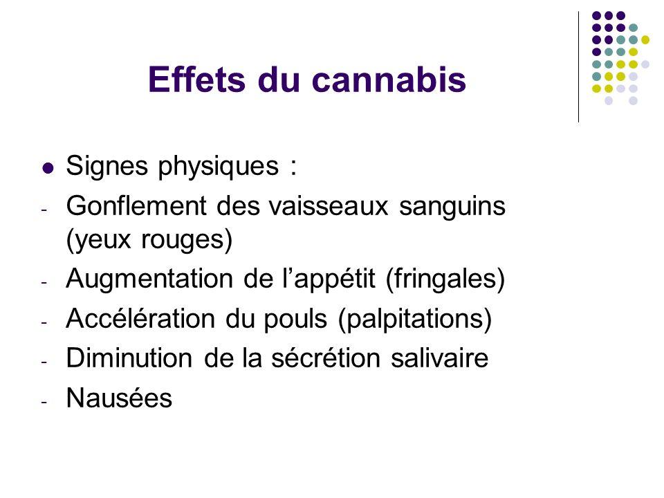 Effets du cannabis Signes physiques :