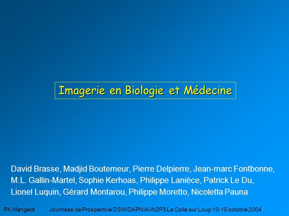 Imagerie en Biologie et Médecine