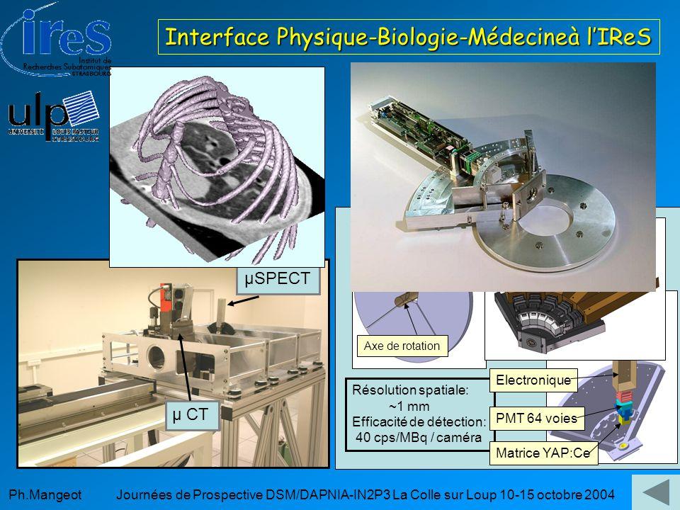 Interface Physique-Biologie-Médecineà l'IReS