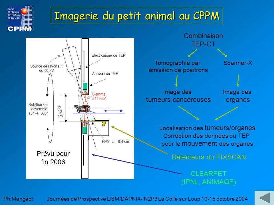 Imagerie du petit animal au CPPM