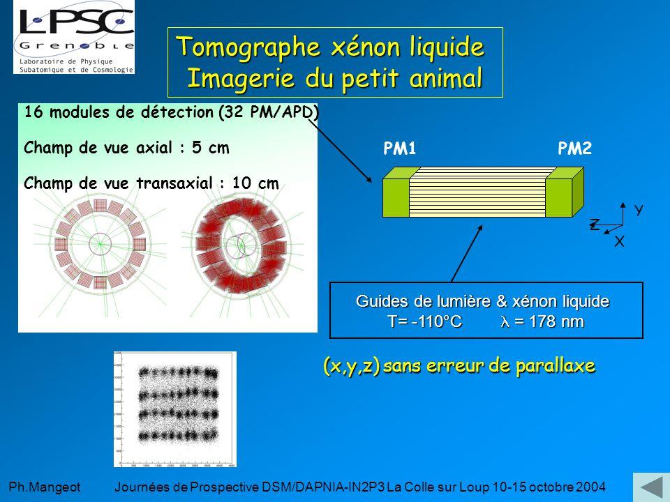 Tomographe xénon liquide Imagerie du petit animal