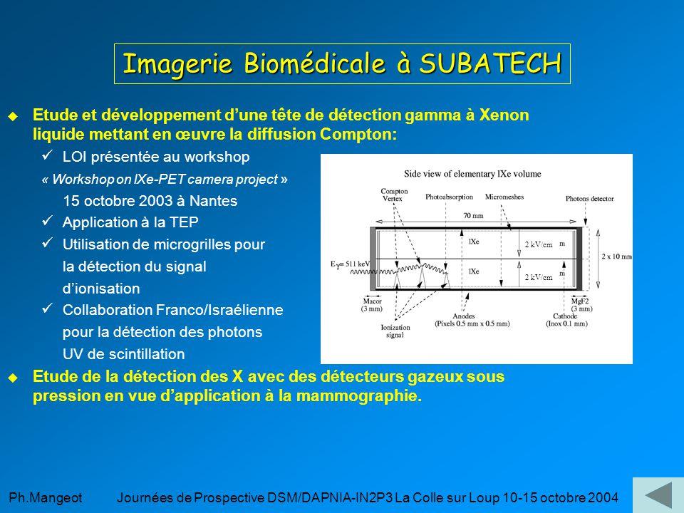 Imagerie Biomédicale à SUBATECH