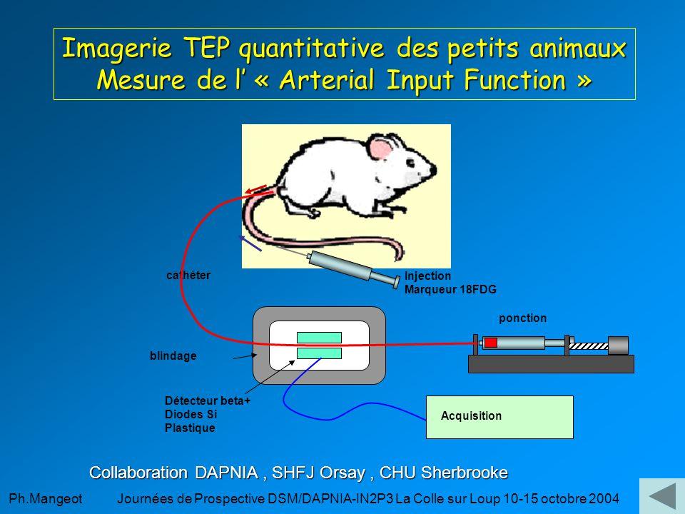 Imagerie TEP quantitative des petits animaux Mesure de l' « Arterial Input Function »