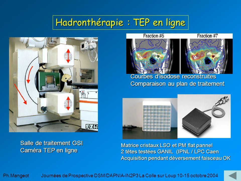Hadronthérapie : TEP en ligne