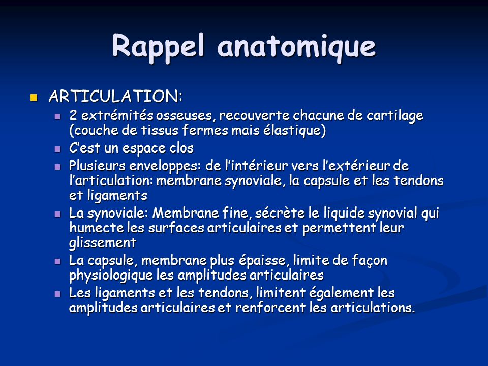 Rappel anatomique ARTICULATION: