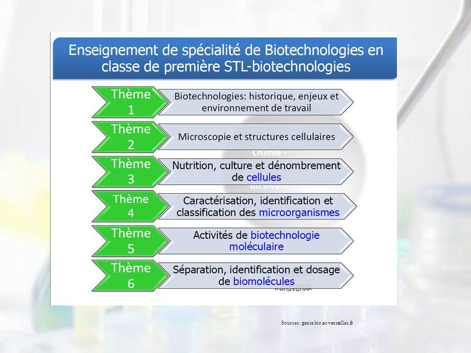 Sources: genie.bio.ac-versailles.fr
