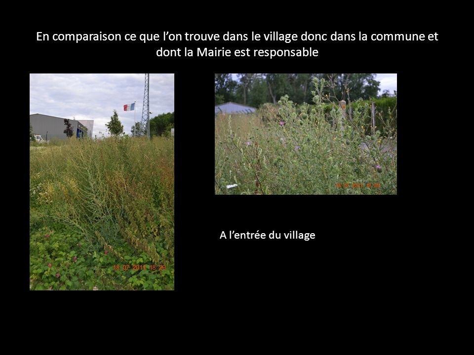 En comparaison ce que l'on trouve dans le village donc dans la commune et dont la Mairie est responsable