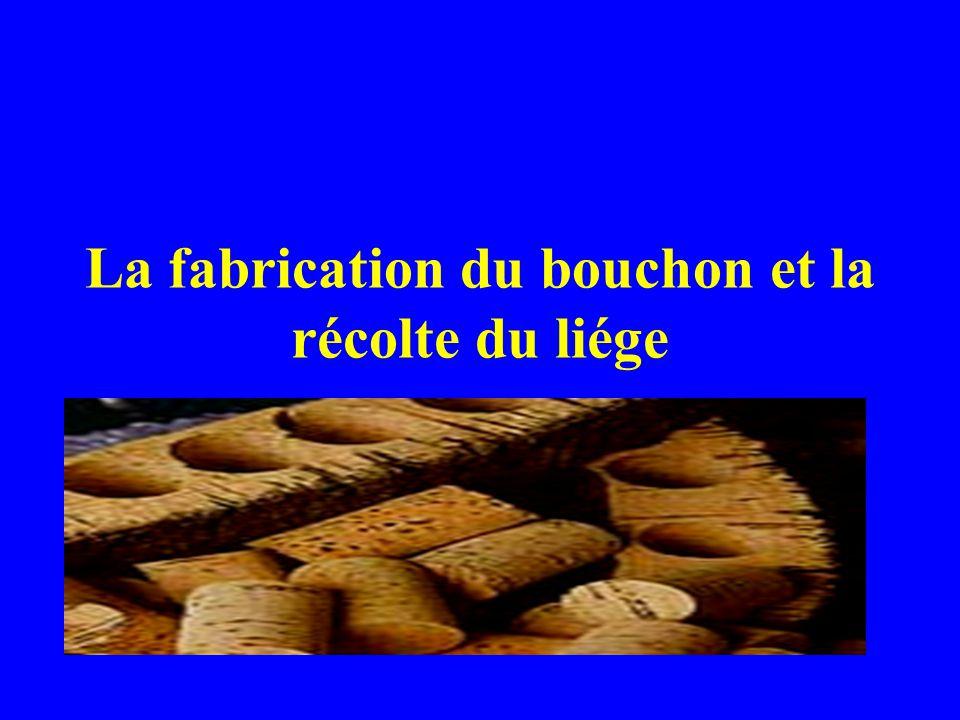 La fabrication du bouchon et la récolte du liége