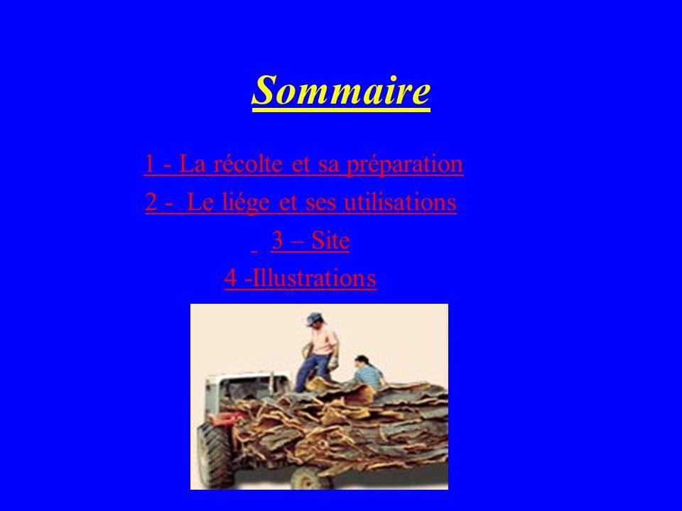 Sommaire 1 - La récolte et sa préparation